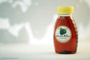 Miel d'Alaska, miel au sirop de bouleau, miel de l'arctique__selection NativeDelicatessen